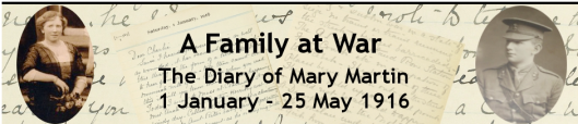 The Diary of Mary Martin