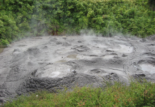 NZ bubbling mud