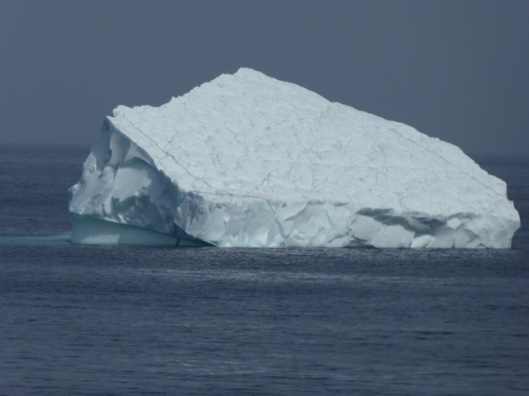 Iceberg on crossing to Labrador